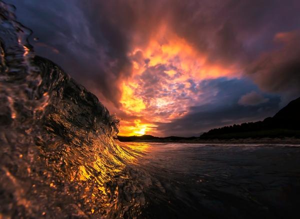 Gullbølge. 40 poeng. © Audun Rikardsen