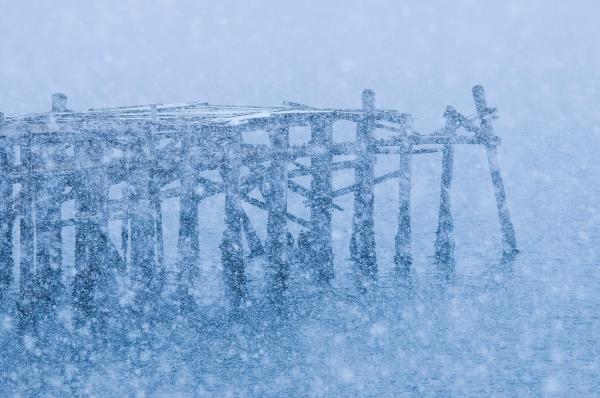 Snøvær. 42 poeng. © Håvard Larsen