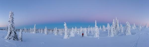 Tykky Sunrise. 42 poeng. © Hanneke Luijting