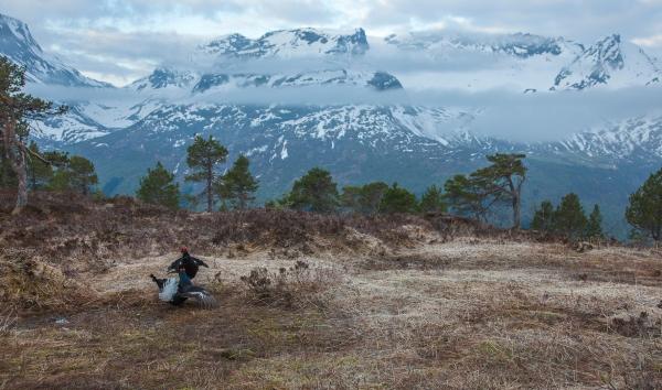 Morgon på orremyra. 44 poeng.  © Kjell Ivar Øye