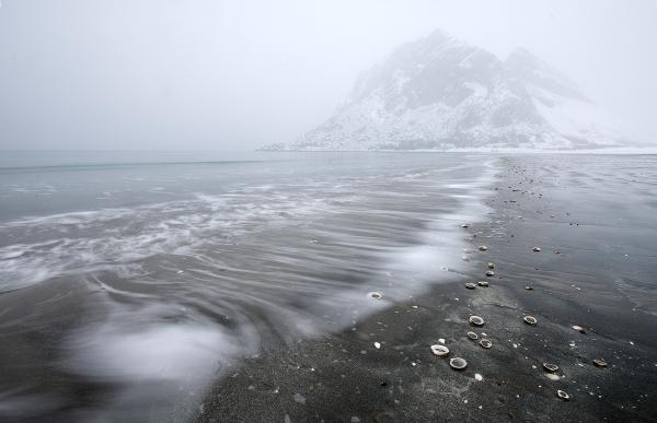 Vinter i Steigen.  42 poeng.  © Ebba Jenssen