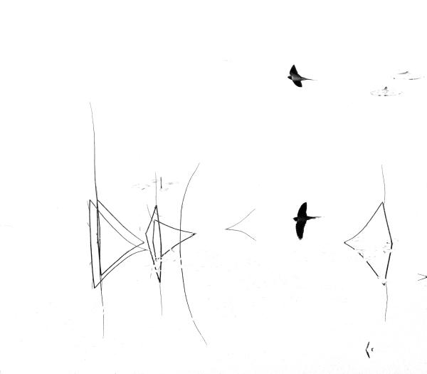 Låvesvale. 44 poeng.  © Leif Rustand