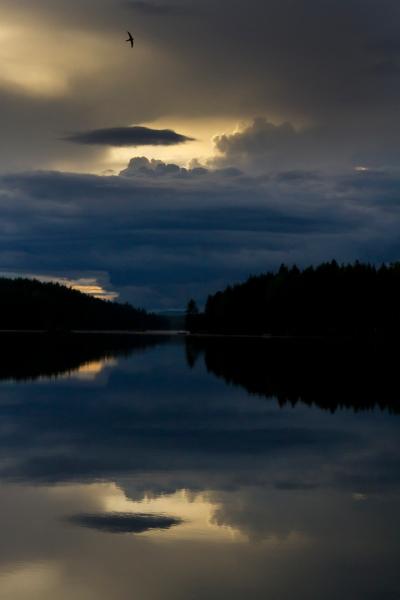 Tårnseiler i landskap. 42 poeng.  © Leif Rustand