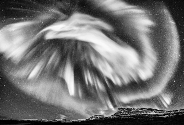 Nordlysfugl. 44 poeng. © Jan R. Olsen