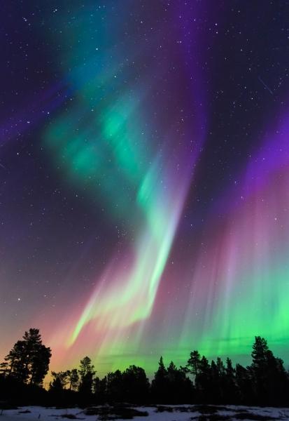 Dansende Nordlys.  44 poeng.  © Kolbein Svensson
