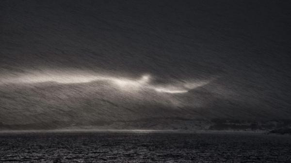 Snøstorm. Gull. © Sylwia Grabinska