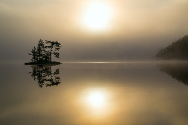 Stillhet. 40 poeng. © Stig Roar Martinsen