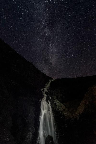 Melkeveien. Gull. © Vegard Lødøen