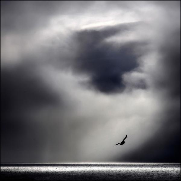 Himmel og hav. 41 poeng. © Atle Helland
